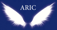ARIC Investigation & Protection Service